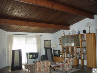 807 Oakey Living Room Ceiling