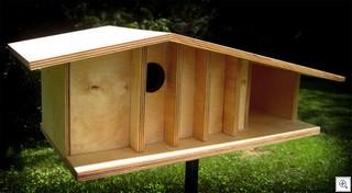 Birdhousefrontvig